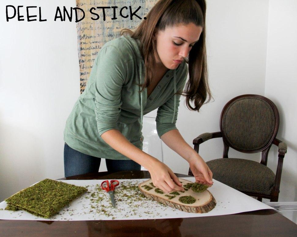 DIY moss sign