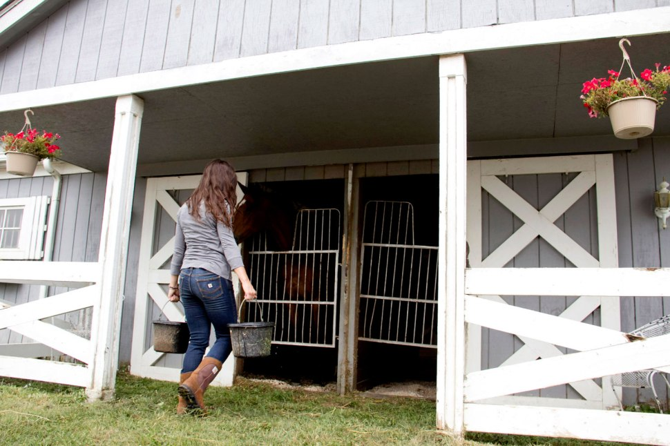 Willowbrooke Farms in Michigan