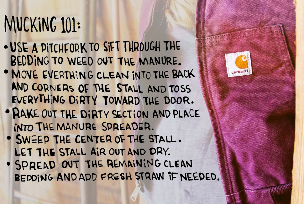 how to muck your horses's stall - crafted in Carhartt