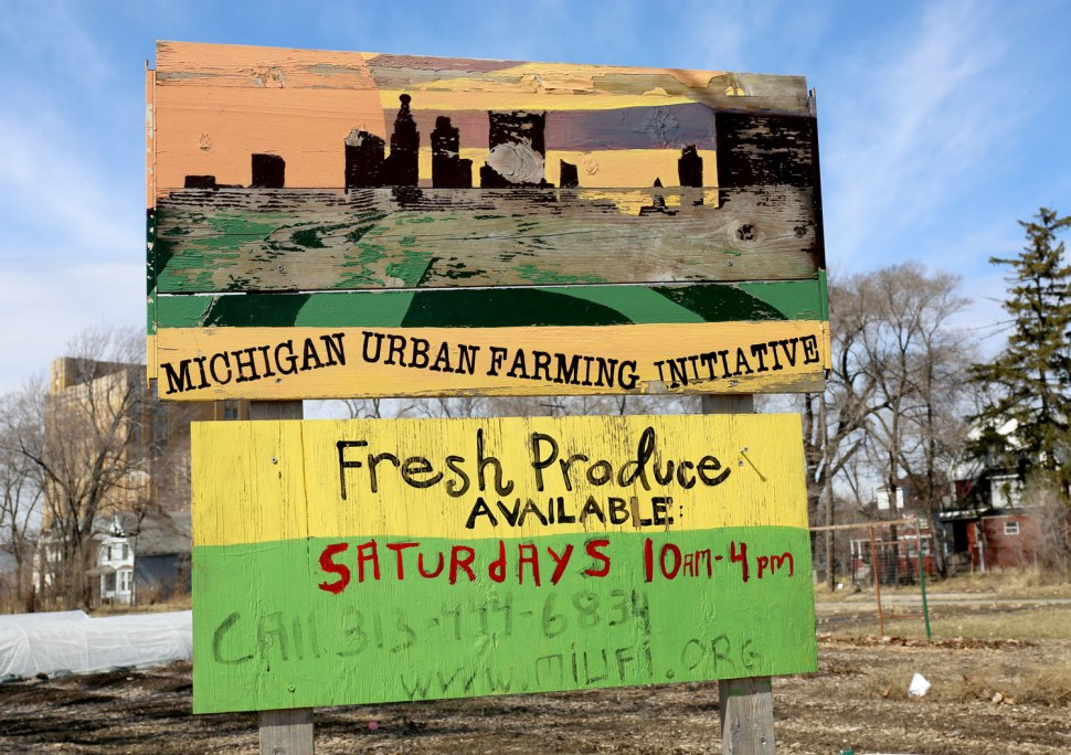 The Michigan Urban Farming Iniative / Crafted in Carhartt
