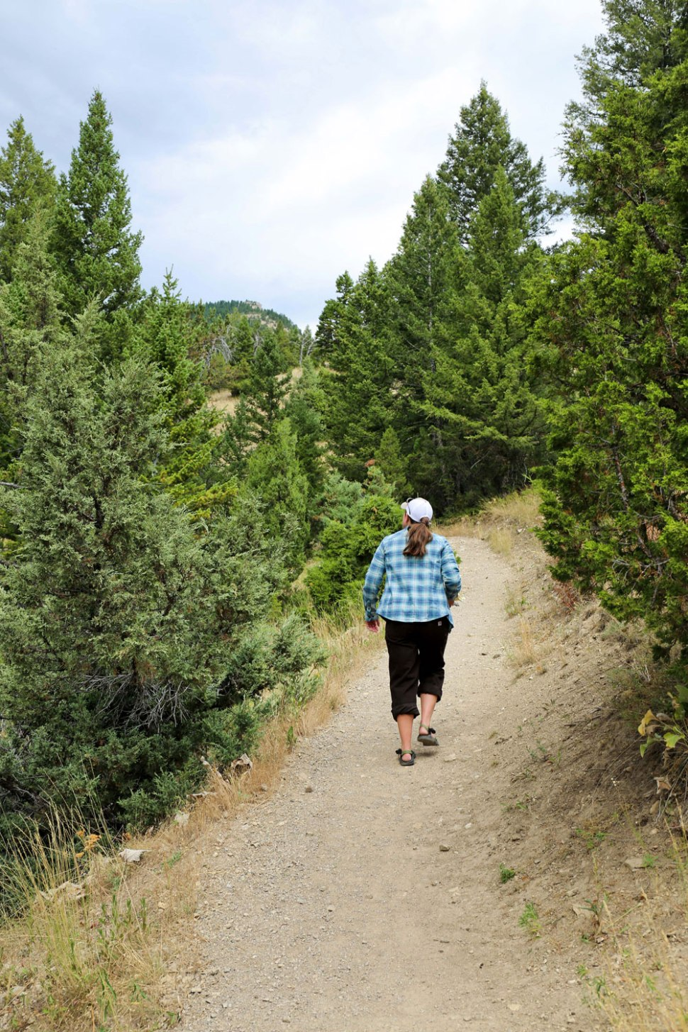 Montana Trail Women / Crafted in Carhartt
