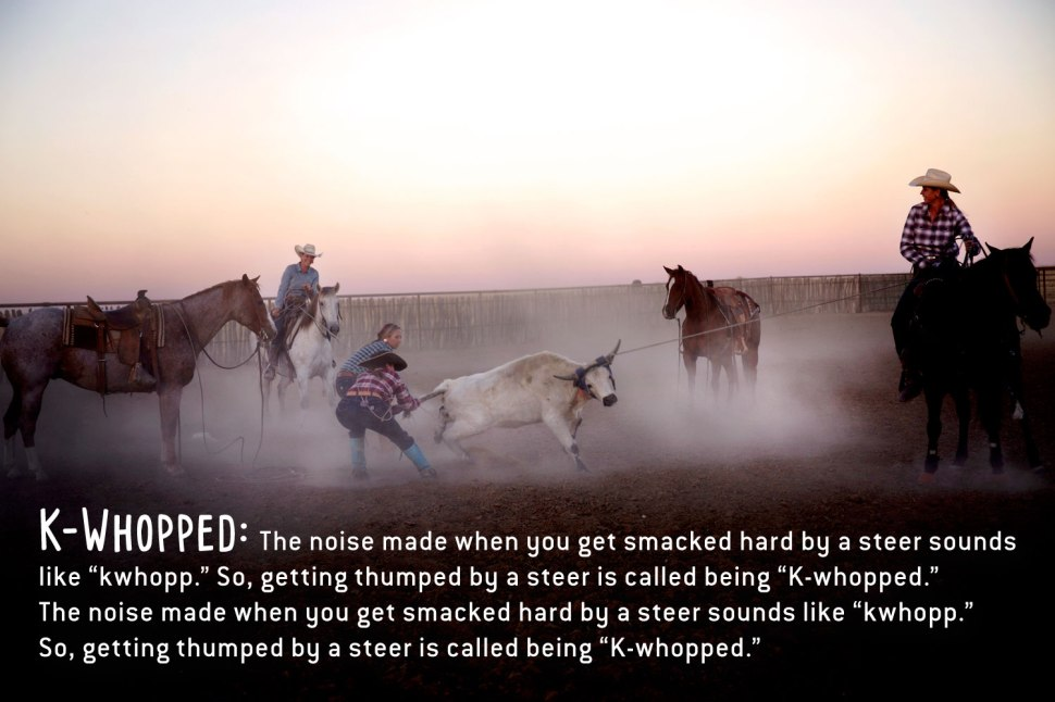 How To Talk Like A Cowboy / Crafted in Carhartt