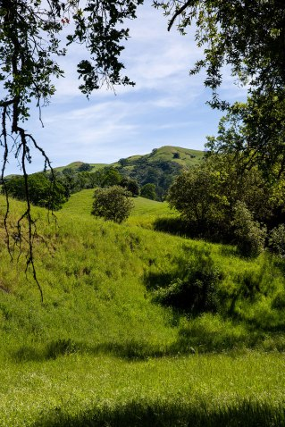 Welcome to Sunol, California / Crafted in Carhartt